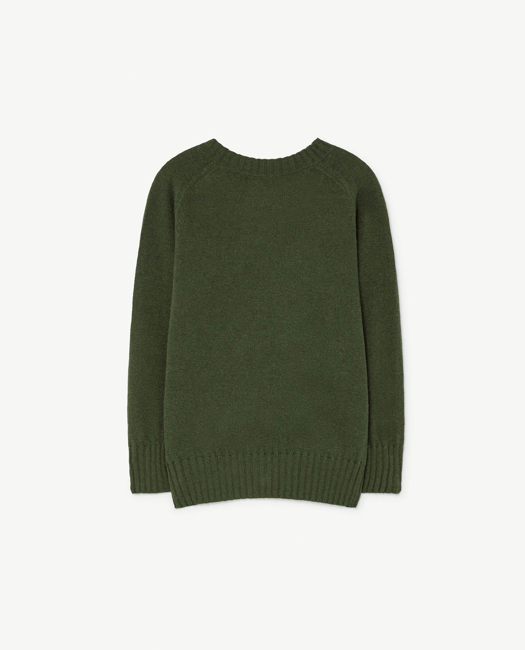 Green Sardine Sweater img-2