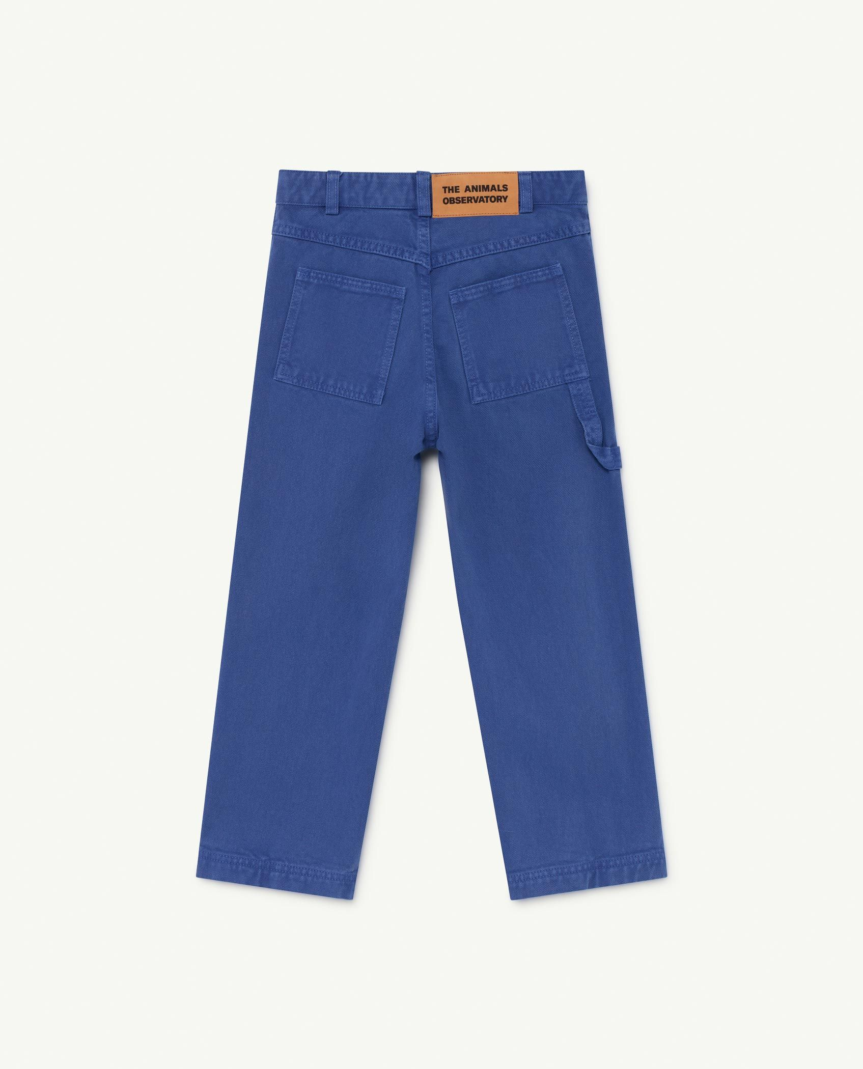 Blue Condor Trousers img-2