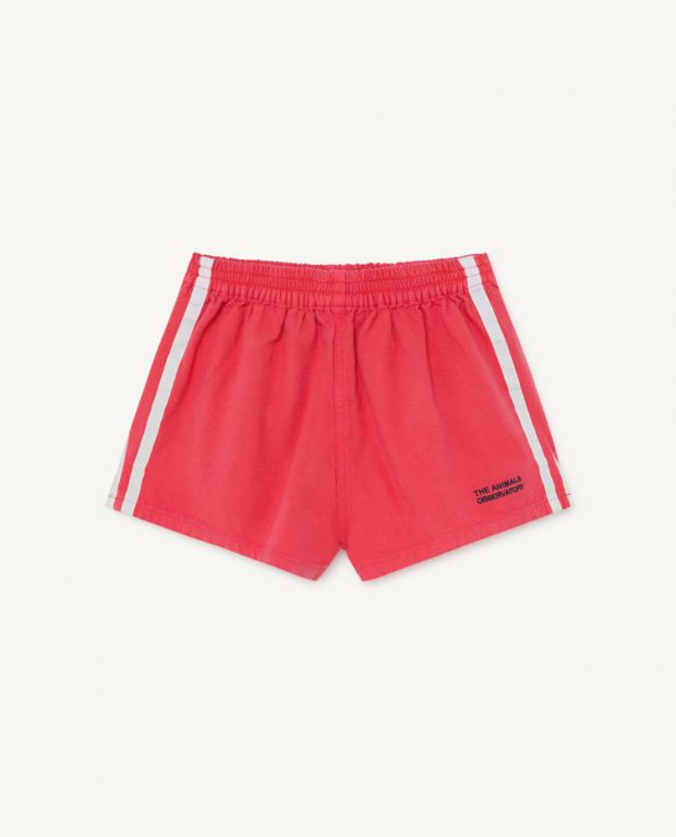 Red Spider Shorts