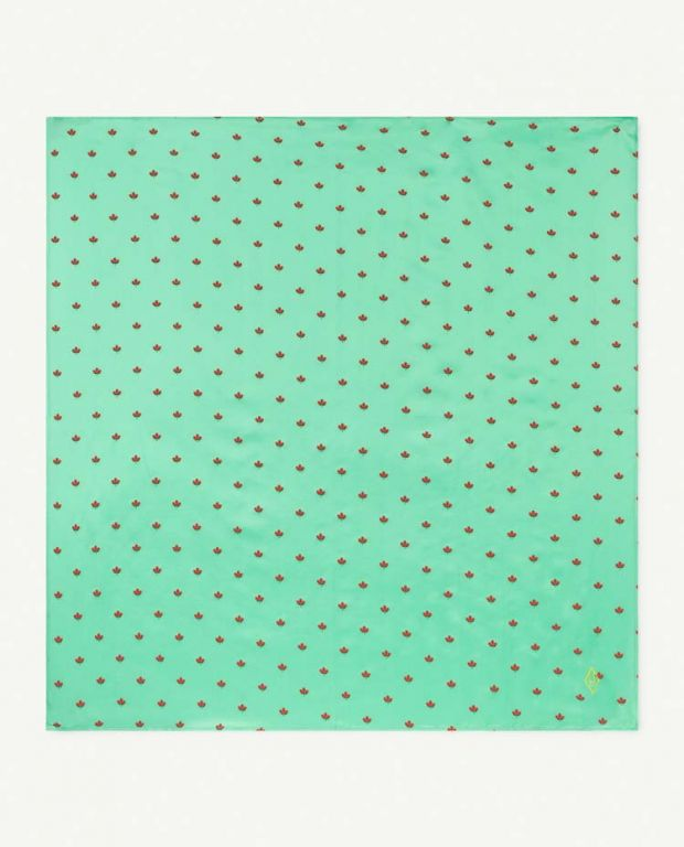Green Ray Scarf